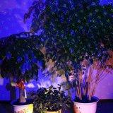 Kerstmis Ligths Openlucht voor de Decoratie van het Nieuwjaar, de Enige Blauwe Statische Projector van de Lichten van de Tuin