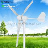 Generatore 600W 24V di energia eolica con il regolatore della carica