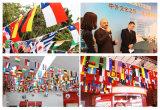Bandierine esterne delle stamine su ordinazione della bandiera nazionale per le attività esterne fantastiche