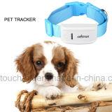 Nouveau GPS tracker Pet avec positionnement en temps réel (TK909)