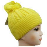 上へのPOM POMの高品質によって編まれる帽子