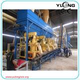 Completare la linea di produzione di legno (serie di SKJ)