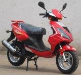 Motorino (JL50AT-6A)