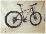 29inch MTBのバイク、合金フレーム、Shimano 24speed