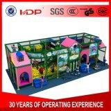 De binnen Apparatuur van de Speelplaats van Kinderen, de Apparatuur van de Speelplaats voor Ontwikkeling van het Kind
