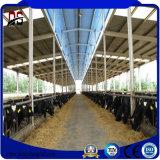 Chambre préfabriquée de structure métallique pour la cloche en acier de ferme de vache