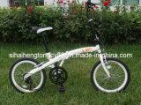 Bicycle/Bike se pliant (FD-001)