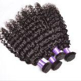 Tiefes lockiges Jungfrau-Menschenhaar-unverarbeitetes brasilianisches Haar