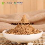 Extrait de Feuilles de ginkgo /Total flavonol glycosides /0.20-0.72 %
