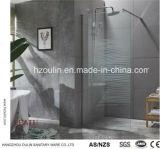 Verre de cabines de douche de plain-pied pour une salle de bains moderne avec Nano conception en verre