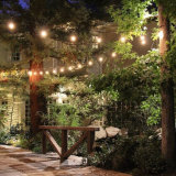 Bunter Stich Lightled dekorative Zeichenkette, die im Freiengarten-Lichter beleuchtet