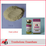 보디 빌딩을%s 신진 대사 크게 하는 스테로이드 호르몬 시험 E 테스토스테론 Enanthate