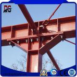 Изготовленный на заказ стальная структура для пакгауза