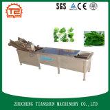 工場販売の野菜およびフルーツのドラム洗濯機および洗濯機