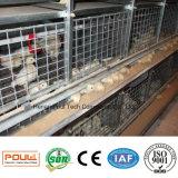 Автоматическая цыплятина цыпленка арретирует для курочки и малого цыпленка (типа рамка h)