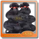 ボディ波のブラジルの漆黒のバージンの毛