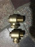 Valvola di ritenuta d'ottone di angolo del filetto Pn25