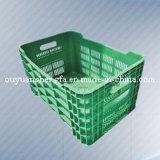 De het de plastic Doos/Krat/Container van de Omzet, voor Verpakking & Opslag