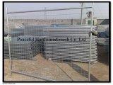 熱い浸された電流を通された金網の取り外し可能な一時塀
