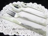 Jeu réglé de vaisselle de vaisselle réglée réglée de couverts de vaisselle plate
