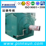 Resbalón Ring Large Size High Voltage Electric Motor Made en China