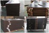 Diseño plano de la puerta del PVC con las tiras del aluminio (SC-P019)