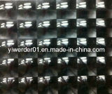 Ojos de Gato Anti-Counterfeiting Holograma etiqueta Made in China (H-076)