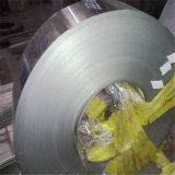Foshan 201 a laminé à froid la bande d'acier inoxydable pour le fournisseur de pipe