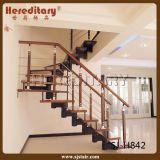 Dobles de acero suave placas de vidrio Escaleras de madera (SJ-3026)