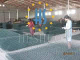 Оцинкованный с покрытием из ПВХ Galfan оказании помощи мятежникам корзины цен
