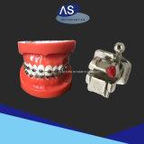 Zahnmedizinisches Produkt-passiver Selbst, der Halter-Orthodontie verbindet