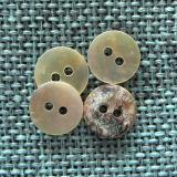 100% Agoya naturale Shell Button per High End Cloth