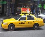 P5 LEIDEN van het Dak van de Taxi Teken