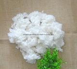 Semi fibre discontinue de polyesters du coussin 15D*32mm Hcs/Hc de sofa de Vierge