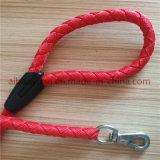 Correas de perros de color rojo brillante collar y correa Wovven cintas