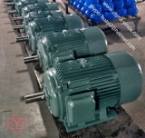 0.55kw~200kw Tefc Three Phase AC Motor
