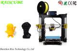 Raiscube 아크릴 LCD 제어반 지능적인 디지털 Fdm 탁상용 3D 인쇄 기계 3D