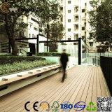 Jardín hueco impermeable rentable del Decking de la calzada WPC