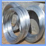 Reliure électro-galvanisé Fil de fer pour la construction