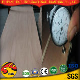 madera contrachapada de 9m m Eaculyptus (e1 pegamento/okoume/bingtangor/birch/ash/oak)