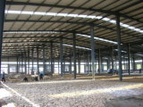 ISOのプレハブの大きいスパンの鉄骨構造の研修会