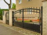Cancello/portello ornamentali della proprietà del ferro saldato di sicurezza europea su ordinazione