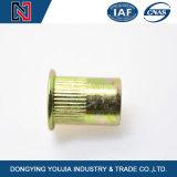 Hot Sale couleur plaqué zinc rivetée écrous en acier inoxydable