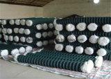 Покрынная PVC гальванизированная ячеистая сеть загородки ячеистой сети звена цепи/диаманта