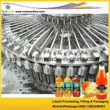 Machine à jus de bouteille en PET / plastique / équipement de remplissage de jus