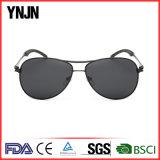 Venda a quente Ynjn personalizada de boa qualidade própria marca de óculos de sol (YJ-F8266)