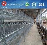 La volaille posent le matériel de ferme de cages de poulet en Angleterre