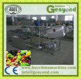 Limpe a linha de processamento de frutas de produtos hortícolas na China