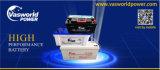 Verkoop van uitstekende kwaliteit van de Batterij van het Lood van de Batterij 12V 65ah de Zonne Zure Online Hete van Uitstekende Chinese Leverancier
