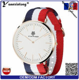 Yxl-303 de Fabriek van het Polshorloge van Dw van de Riem van Nyloy van het Horloge van de Mensen van de Dames van de Horloges van het Kwarts van de manier